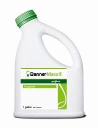 Banner Maxx II Fungicide