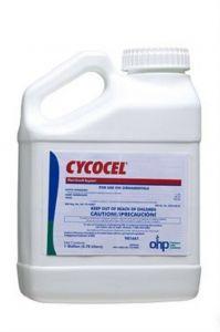 Cycocel Plant Growth Regulator-Gallon