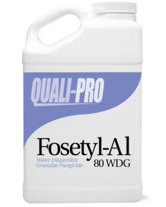 Fosetyl-Al 80 WDG Fungicide
