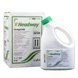 Headway Fungicide-Gallon